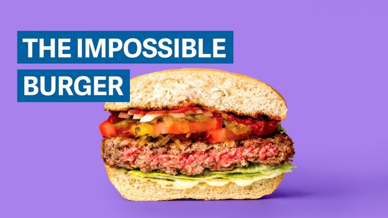 Impossible Foods Leads the Way on Meatless Substitutes