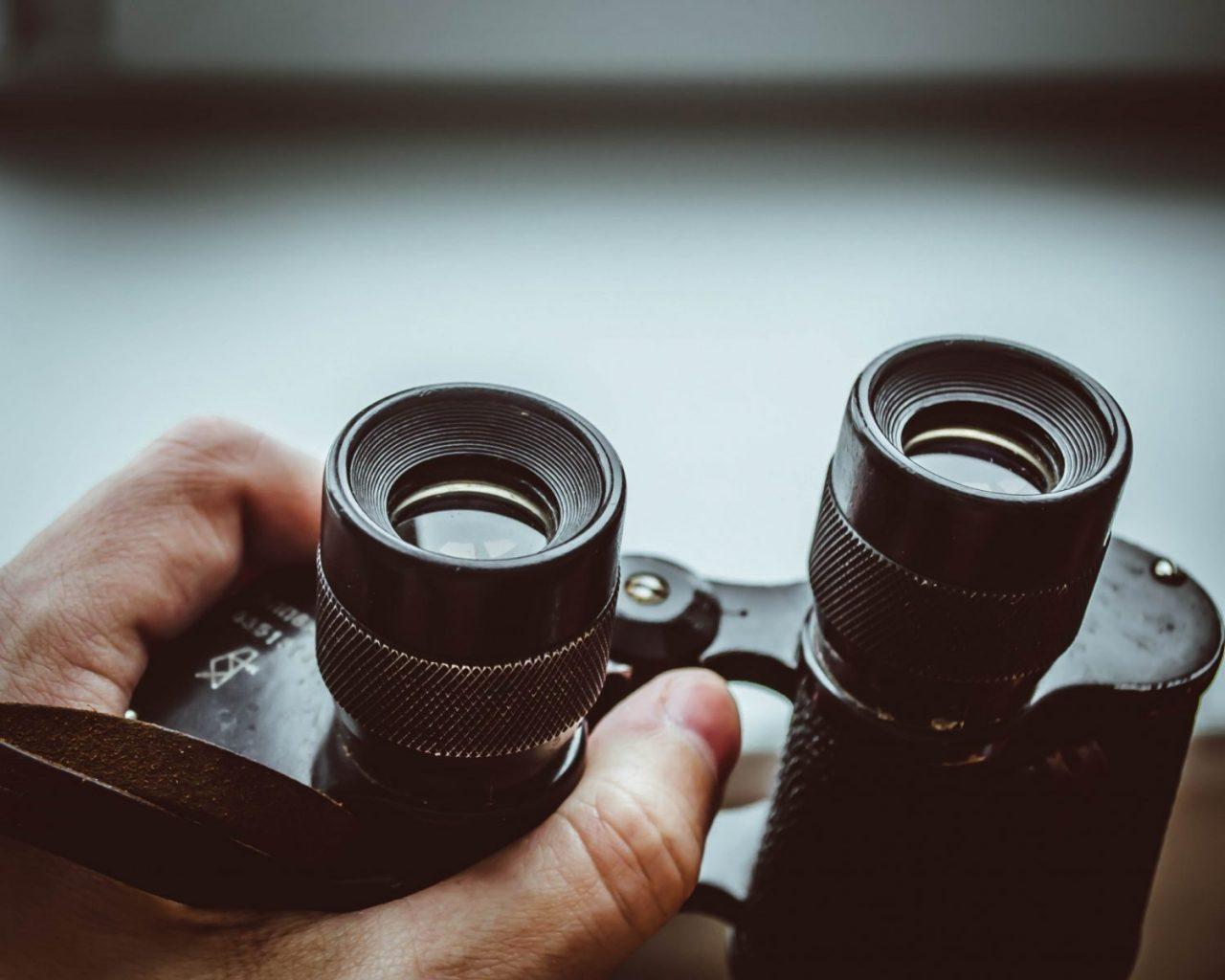 binoculars to bring on a cruise